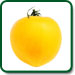 Yellow Plum