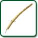 Pleurisy Root plant